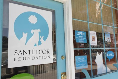 Local animal shelters give abandoned animals a better life