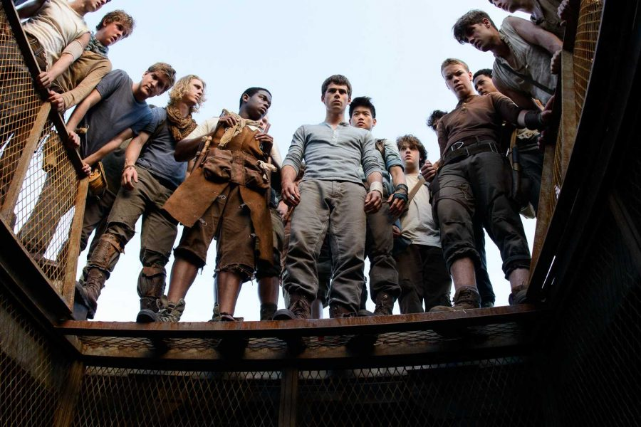 Dylan+O%27Brien%2C+Will+Poulter%2C+Ki+Hong+Lee%2C+and+their+fellow+cast+mates+from+The+Maze+Runner.