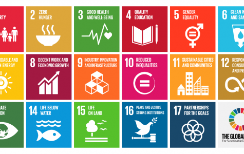 The Global Goals for sustainable development have been set; time to take action