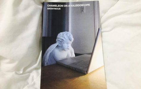 Anonymous puts things under scrutiny with 'Chameleon on a Kaleidoscope'