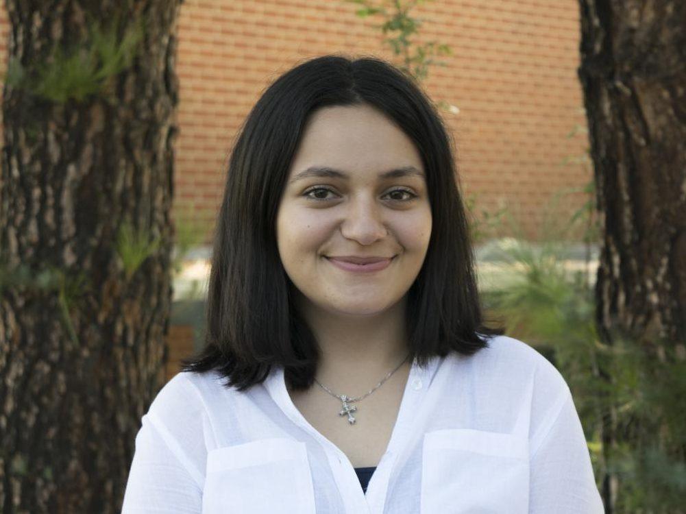Ani Sarkisyan