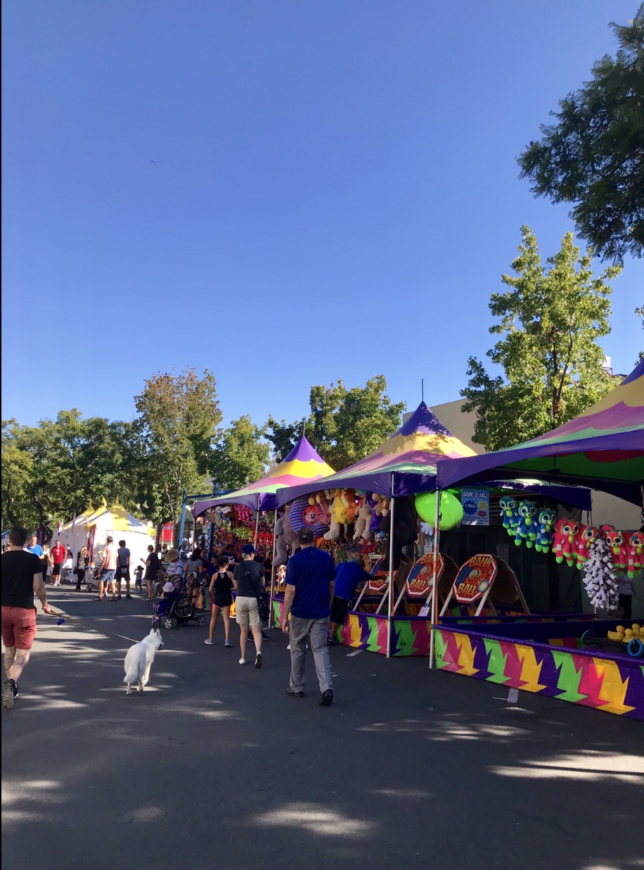 Montrose is overflowed with colorful colors.