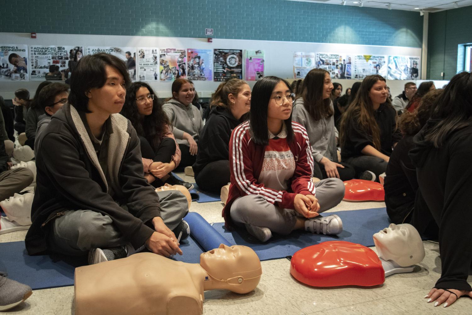 Seniors practice CPR on dummies during the CPR training at Clark!