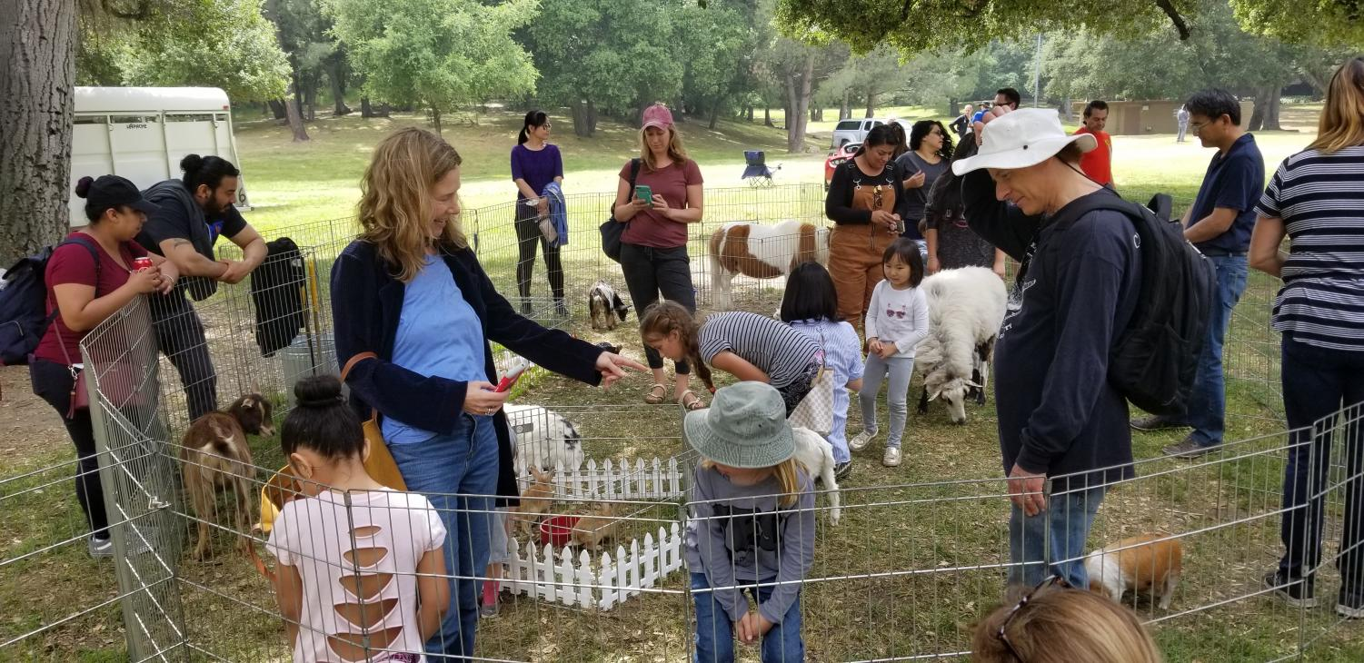 The people enjoying the petting zoo at the CV County Fair.