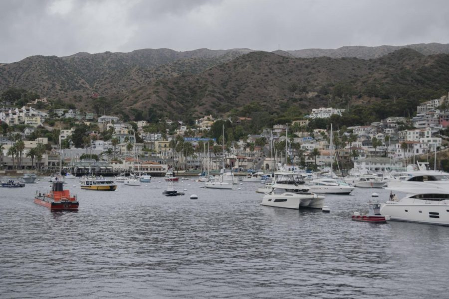 Students arrive and the first thing they view is the beautiful site of the Catalina Island.