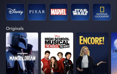 Disney+'s colorful interface appeals to a distinct audience