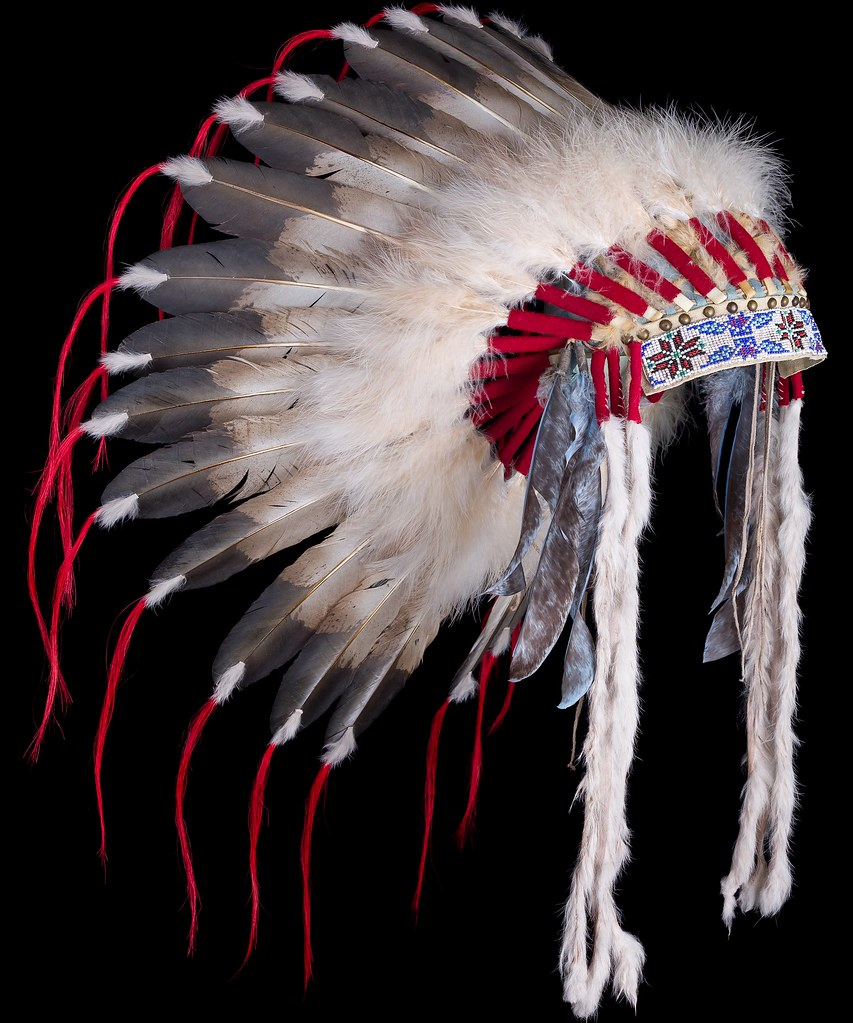 Cultural appropriation is a growing problem and it can be represented in many ways, such as people wearing Native American headdresses to certain festivals.