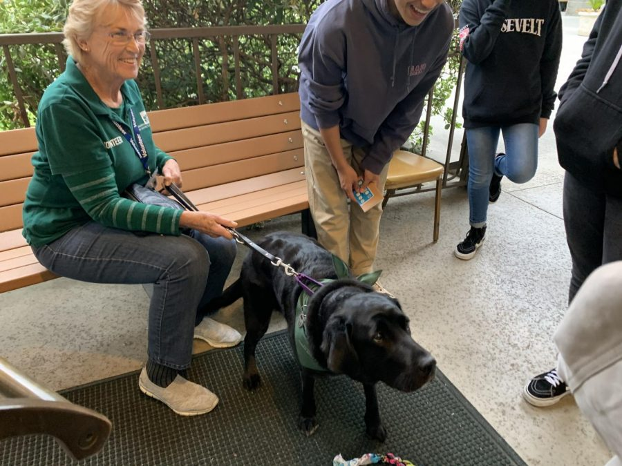 A playful service dog stood at the entrance of La Canada Congregational Church, ready to be petted by everyone.