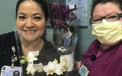 On April 10, LAC + USC Medical Center's staff received orchids from Westerlay Orchids.
