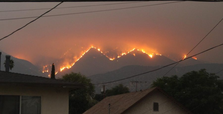 The Bobcat Fire burning a mountainside near Monrovia, only a few days after it started in early September.