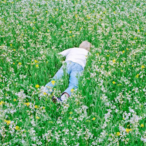 The album cover for Nurture features Porter Robinson himself, laying face down in a flowery field.