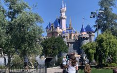 The Disneyland Resort's reopening saw many changes to the traditional experience  of visiting the magic kingdom, such as outdoor queuing only that stretched into communal walkways.