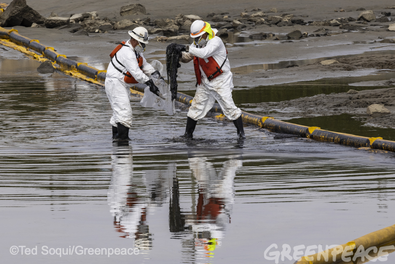 Clean up of the Talbert Marsh wetlands. Workers hand-scoop oil off of the beach and place them into plastic bags.